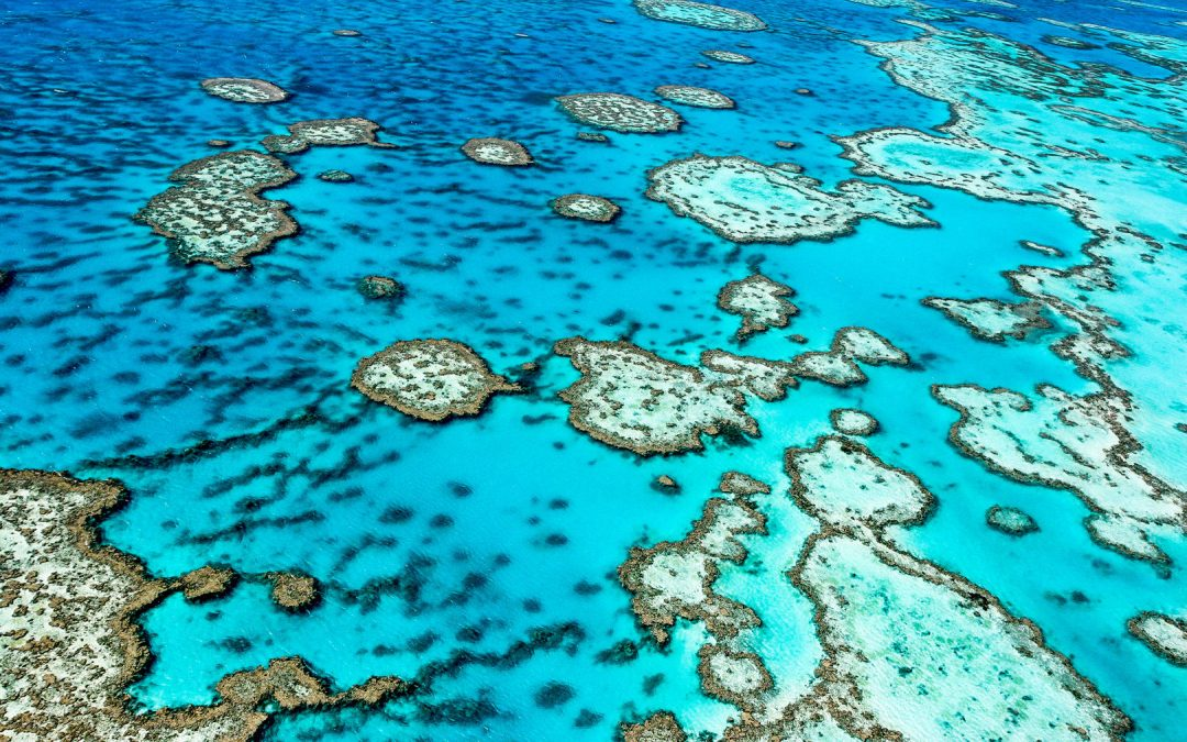 Remote GBR expedition 2020